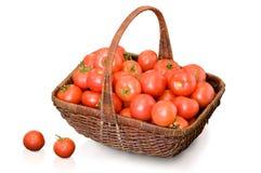 Tomaten op wit Stock Foto's