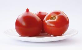 Tomaten op witte achtergrond Stock Foto's