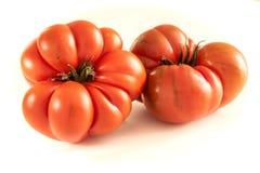 Tomaten op witte achtergrond stock afbeeldingen