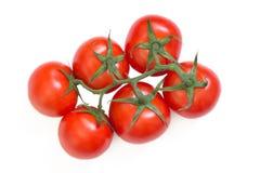 Tomaten op witte achtergrond worden geïsoleerd die Stock Afbeeldingen