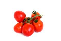 Tomaten op witte achtergrond worden geïsoleerd die Stock Fotografie