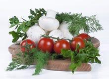 Tomaten, paddestoelen en kruiden Royalty-vrije Stock Foto's