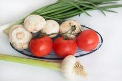 13   Tomaten, paddestoelen, uien en knoflook. Royalty-vrije Stock Foto