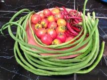 Tomaten, Paprika, lange Bohnen und Sprösslinge über der Platte Stockfotos