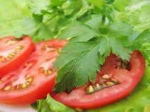 Tomaten, Petersilie und Kopfsalat stockbilder