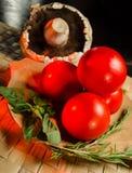 Tomaten, Pilz mit Rosmarin und Basilikumblätter lizenzfreies stockbild