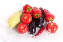 Tomaten, rode paprika's, roodgloeiende Spaanse peperspeper, violette aubergines, groene courgette in dalingen van water stock afbeeldingen