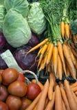Tomaten; salade; sla; radicchio; wortelen Royalty-vrije Stock Foto's