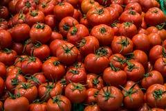 Tomaten in supermarktcontainer royalty-vrije stock afbeeldingen