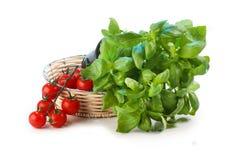 Tomaten und Basilikum stockbilder