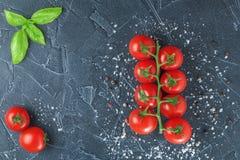 Tomaten und Basilikum auf schwarzem Stein mit Salz Lizenzfreie Stockfotos