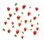 Tomaten und Basilikumblätter lokalisiert auf weißer Draufsicht Lizenzfreie Stockbilder