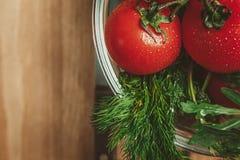 Tomaten und Dill Lizenzfreie Stockfotografie
