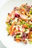 Tomaten- und Gemüsesalat mit Fleisch des geräucherten Lachses Lizenzfreies Stockbild