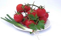 Tomaten und grüne Zwiebel Lizenzfreies Stockbild