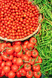Tomaten und grüner grüner Pfeffer Stockfotos