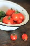 Tomaten und grüner Paprika Stockbild