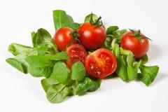 Tomaten und grüner Salat auf weißem Hintergrund. Lizenzfreie Stockfotografie