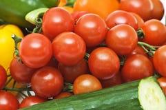 Tomaten und Gurke lizenzfreie stockfotos