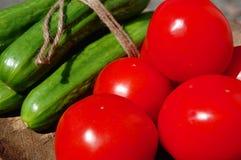 Tomaten und Gurken Lizenzfreies Stockbild
