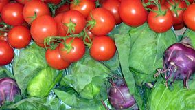 Tomaten und Kohl Stockfotografie