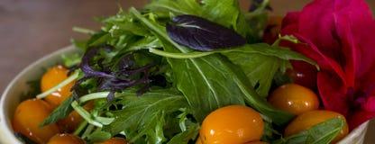 Tomaten- und Kopfsalatsalat Lizenzfreies Stockbild