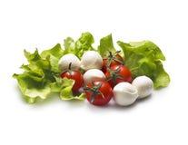 Tomaten und Mozzarella Stockbild