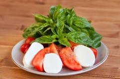 Tomaten- und Mozzarellascheiben mit Basilikumblättern Lizenzfreies Stockbild