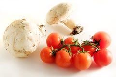 Tomaten und Pilz Stockbild