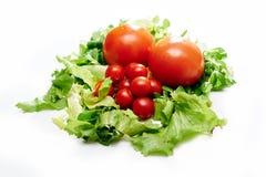 Tomaten und Salat Stockfoto