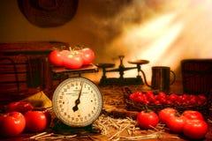 Tomaten und Skala auf altes Land-Bauernhof-Standplatz-Tabelle lizenzfreie stockbilder