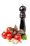 Tomaten und verschiedene Gewürze lizenzfreie stockbilder