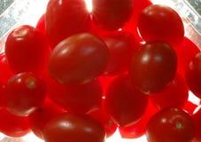 Tomaten in verpakking Royalty-vrije Stock Foto's