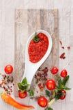 Tomatenchutney mit Bestandteilen Lizenzfreies Stockfoto