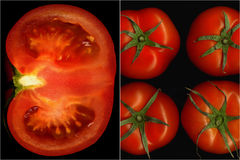 Tomatencollage Stock Afbeeldingen