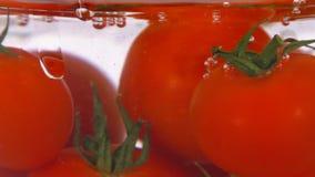 Tomatenfall in den Wasserabschluß oben stock video footage