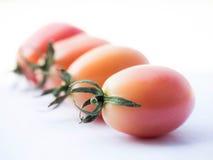 Tomatengemüse Stockbild