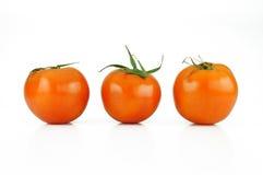Tomatengemüse Lizenzfreie Stockfotografie