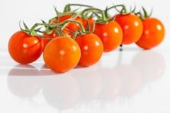 Tomatenkirsche Stockbilder