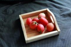tomatenkleur op houten dienblad Stock Foto's