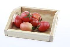 tomatenkleur op houten dienblad en witte achtergrond Royalty-vrije Stock Afbeeldingen