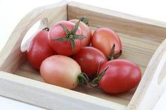 tomatenkleur op houten dienblad en witte achtergrond Stock Foto's