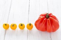 Tomatenrij Stock Foto's