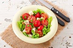 Tomatensalade met sla, kaas Stock Afbeeldingen