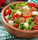 Tomatensalade met sla, kaas Royalty-vrije Stock Afbeeldingen