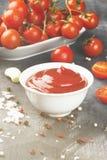 Tomatensauce in den weißen Schüssel-, Gewürz- und Kirschtomaten auf einer Dunkelheit Lizenzfreie Stockfotos