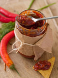 Tomatensauce mit Gewürz Lizenzfreie Stockfotos