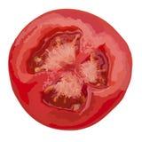 Tomatenscheibe lokalisiert auf weißem Hintergrund, Draufsicht Lizenzfreies Stockfoto