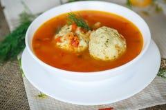 Tomatensuppe mit Fleischklöschen Lizenzfreies Stockbild