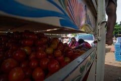 Tomatenverkäufer mit Familie auf Kleintransporter am lokalen Morgen Mrz lizenzfreie stockfotografie